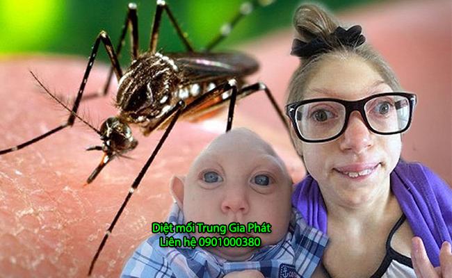 Bệnh teo não do virus zika lây truyền do muỗi